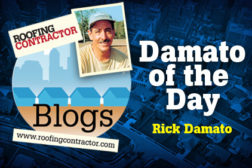 Damato of the day blog feature