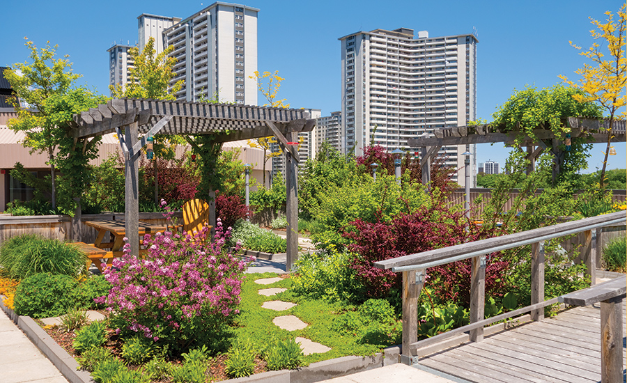 How Does Your Roof Garden Business Grow 2016 04 04 Roofing