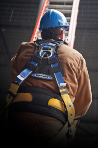 Fall Protection Equipment in body