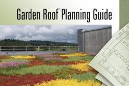 vegetative roofing
