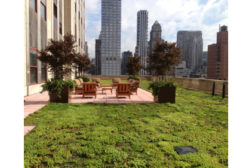 Empire State Building green roofs