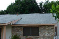 Elastomeric Green Roof Coating