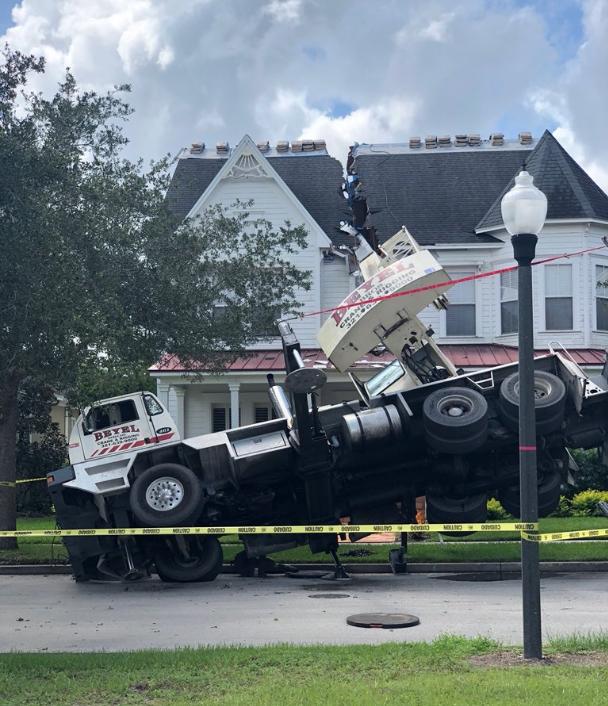Fallen Crane 1