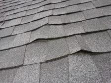 aspen-leaf-roofing-shingle-appraisal