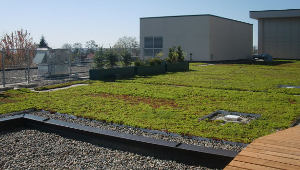 vegetative roofing system